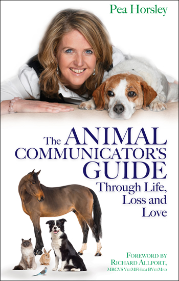 Animal Communication Guide Through Life, Loss and Love