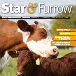 Star&Furrow