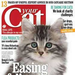 YourCat-May2013