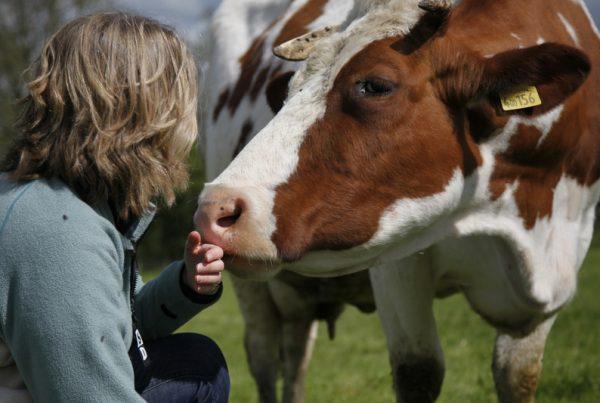 vegan, animal communicator