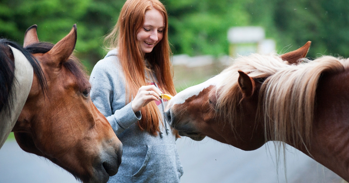 3 Barriers to Animal Communication