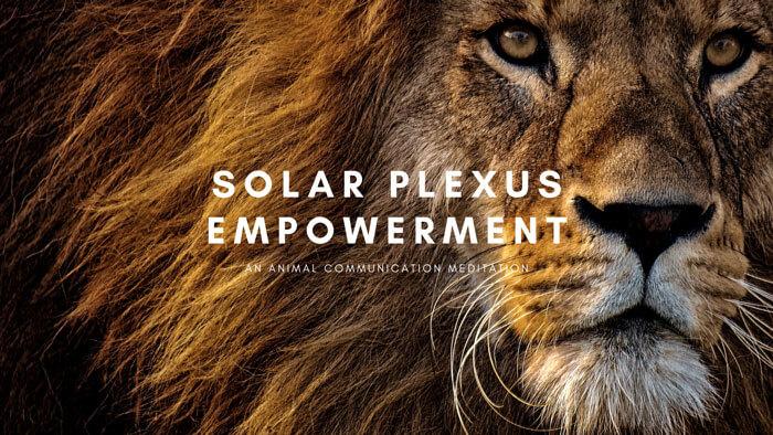 Solar Plexus Empowerment